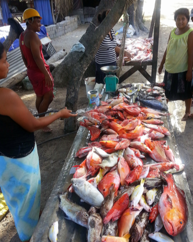 woman-selling-fish-market
